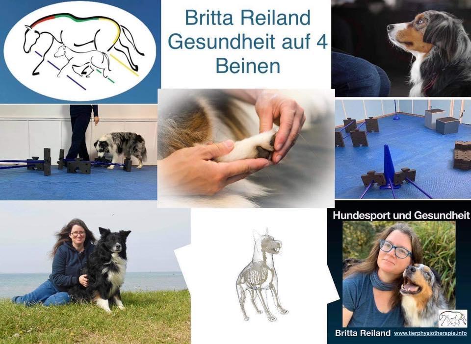 Dozentin: Britta Reiland