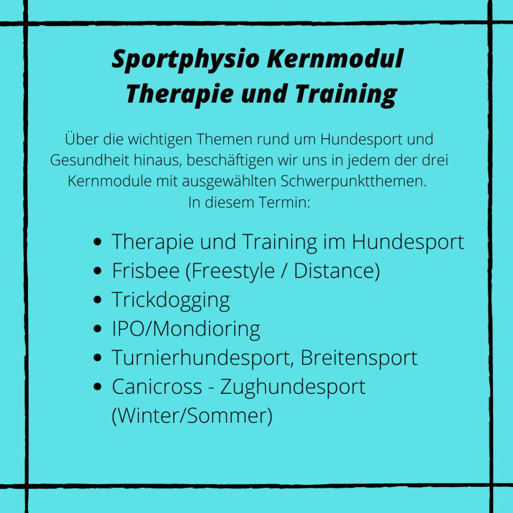 Kernmodul Therapie und Training