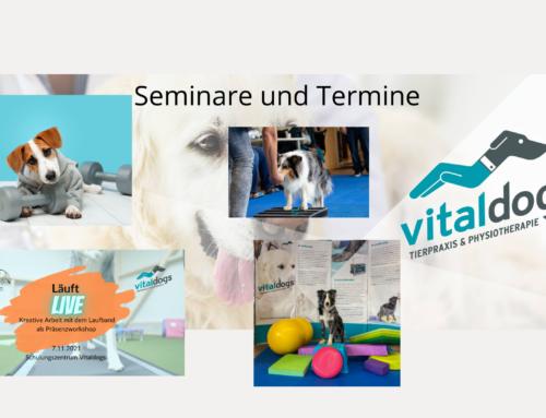 Termine, Seminar, Events